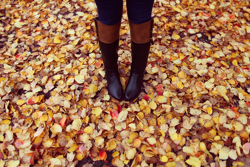 Black boots and colourful autumn leaves